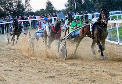 Golega corridas de cavalos