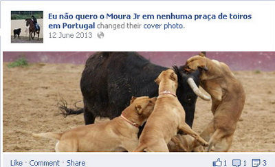 Eu não quero o Moura Jr em nenhuma praça de toiros em Portugal
