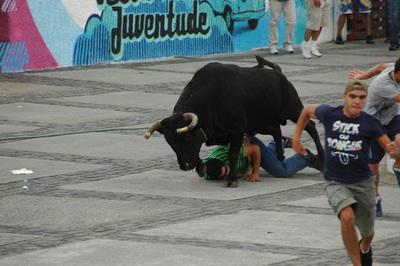 exemplo da insanidade das touradas a corda
