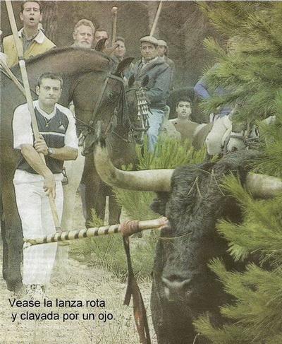 toro de la vega tordesilhas