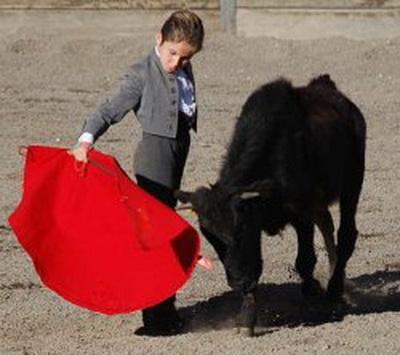 miudo toureiro