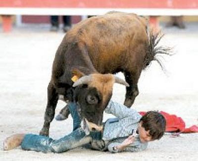 miudo toureiro1