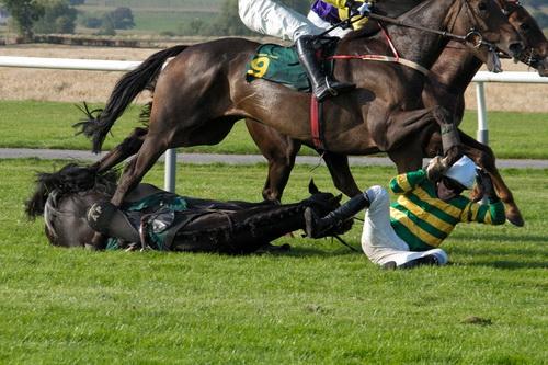 corridas de cavalos1