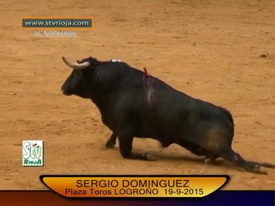 touro paraplegico1