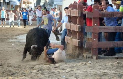 colhida largada de touros